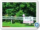 Walk for AAUPOC - 2016